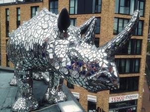 Southside-Rhino 1